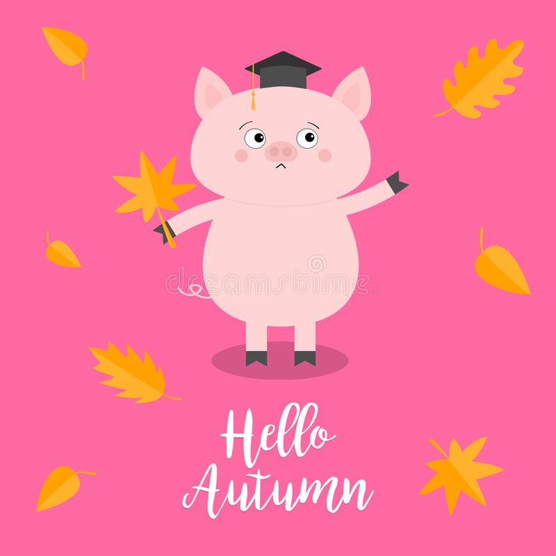 Hello autumn. Pig piglet Graduation hat Academic Cap Orange red fall leaf. Happy surprised emotion. Cute funny cartoon baby charac. Ter Pet animal collection royalty free illustration