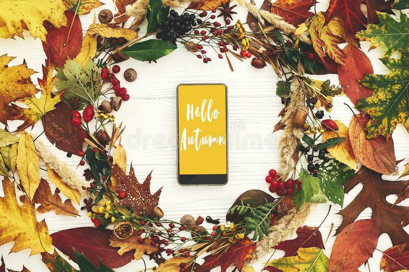 Hello Autumn text, fall greeting sign on phone with yellow screen in autumn wreath of fall leaves, red berries, acorns, anise, royalty free stock photography