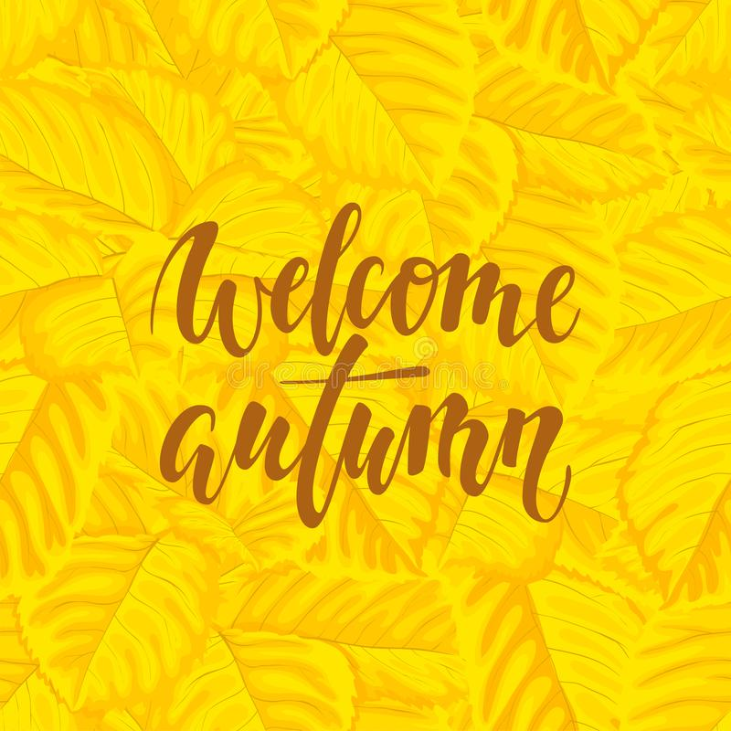 Hello autumn text on yellow background with fall leaves Hand drawn calligraphy, brush pen lettering. design for holiday greeting. Card and invitation of autumn royalty free illustration