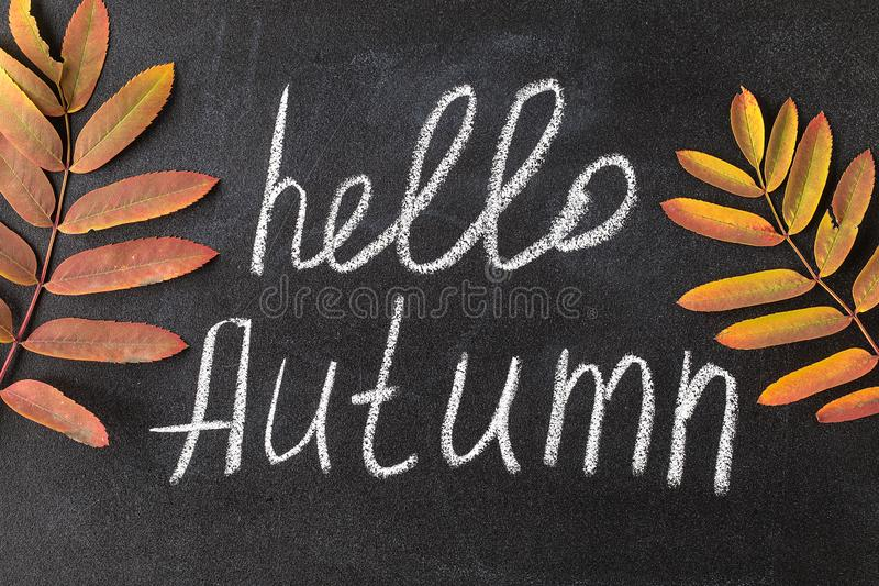 Hello Autumn white chalk lettering on blackboard. stock photo