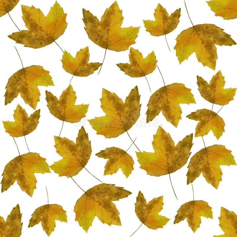 Hello-de herfst De waterverf verlaat patroon stock illustratie