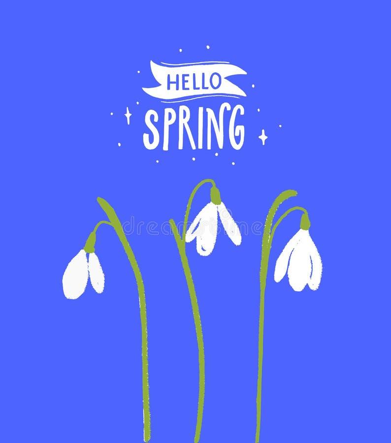 Hello-de inschrijving van de de lentekalligrafie met witte sneeuwklokjebloemen Bloemenillustratie met moderne teksten vector illustratie