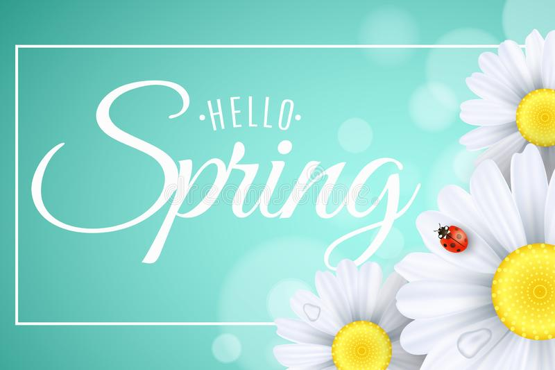 Hello-de kaart van de de lentegift Seizoengebonden banner Lieveheersbeestjekruipen op de bloemen Realistische madeliefjes Kalligr stock illustratie