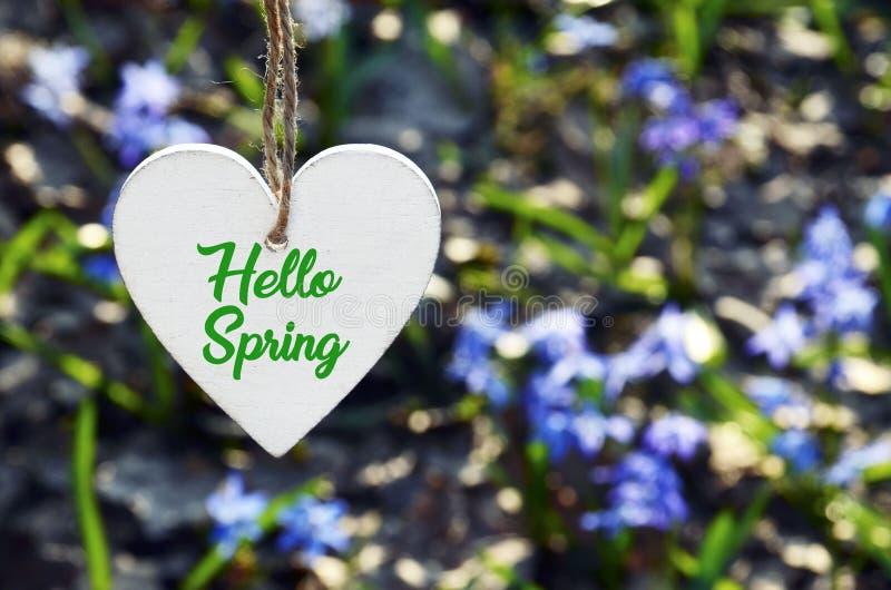 Hello-de lentekaart Het decoratieve witte houten hart met tekst op de vage eerste lente bloeit achtergrond royalty-vrije stock foto
