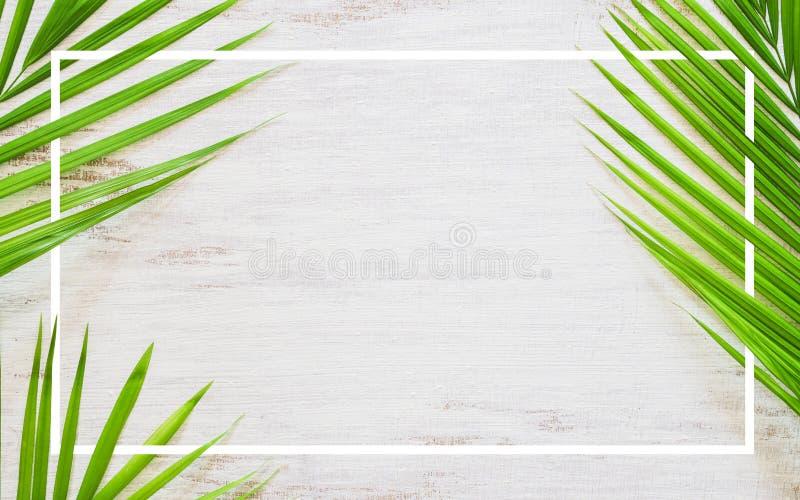 Hello-de vlakte van het de vakantieconcept van de de zomerreis legt affiche achtergrondconcept Hello-de Zomertekst op witte houte vector illustratie
