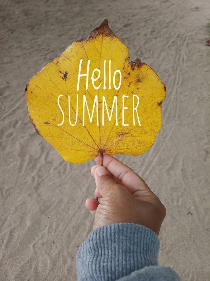 Hello-de zomertekst op een de herfstblad in gele kleur Een jonge vrouwenhand houdt het blad met witte zandachtergrond Menselijk l stock afbeelding