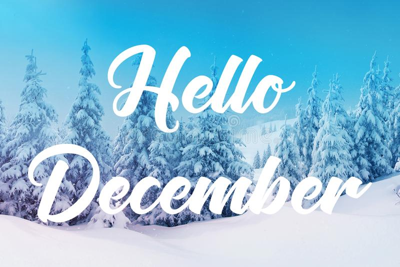 Hello December. Text `Hello December` on the background of snow and forest stock photo