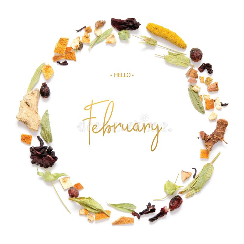 Hello February calligraphy inscription. Frame with herbal tea, dry herbs and flowers with pieces of fruit and berries stock image