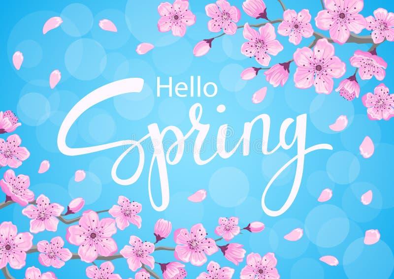 Hello fjädrar bakgrund med blommafilialer för körsbärsröda blomningar stock illustrationer