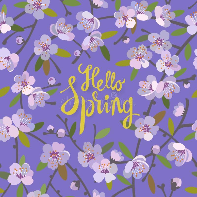 Hello fjädrar blom- bakgrund för vårsäsong med blommande äppleträdfilialer Befordranerbjudande med blom- garnering royaltyfri illustrationer