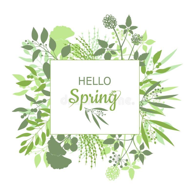 Hello fjädrar design för grönt kort med text i fyrkantig blom- ram royaltyfri illustrationer