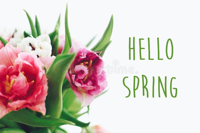 Hello-het teken van de de lentetekst op het mooie dubbele boeket van pioentulpen in licht de lente Modieuze bloemengroetkaart Hel stock fotografie