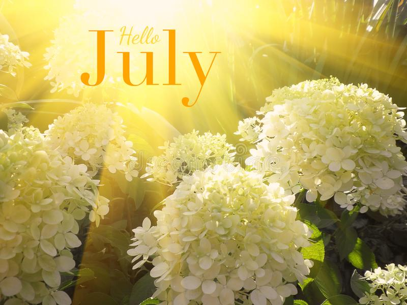 Hello July - inspirational motivation quote stock image