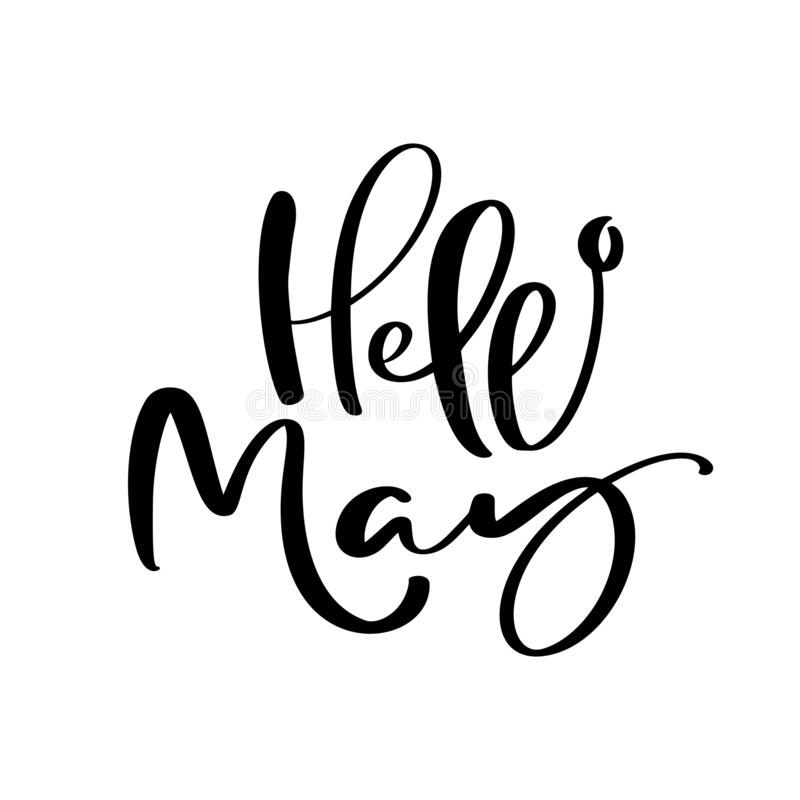 Hello May hand drawn calligraphy text and brush pen lettering. design for holiday greeting card and invitation of seasonal spring royalty free illustration