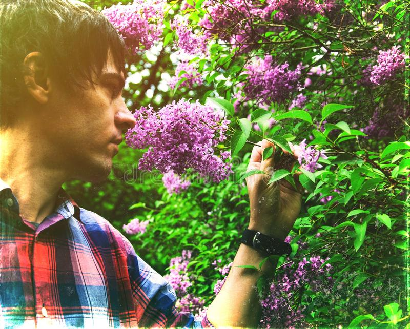 Hello, May! Young man smelling purple lilac flowers in spring in the forest. stock photo