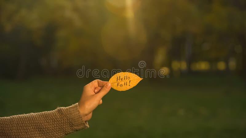 Hello nedgång som är skriftlig på det gula bladet, hand som rymmer handstilar, guld- höstsäsong fotografering för bildbyråer