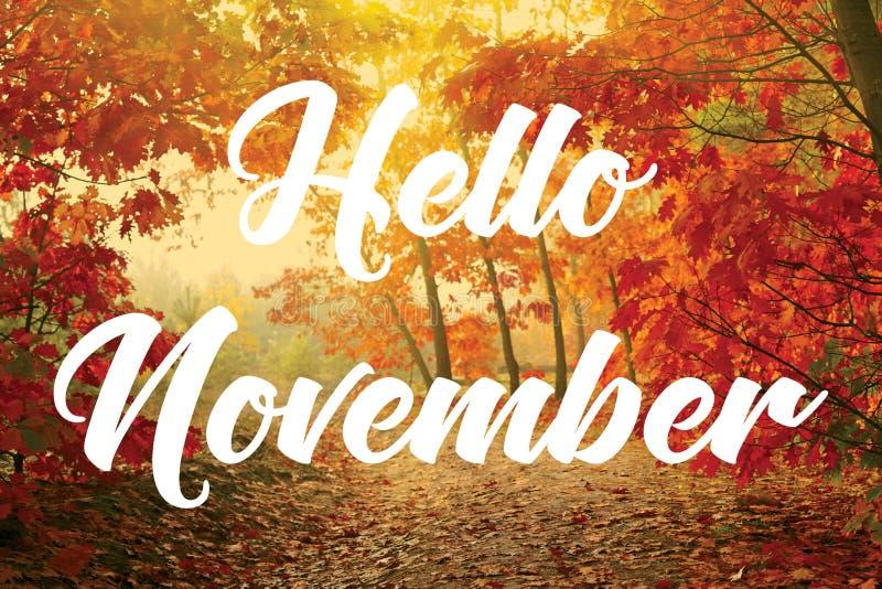 Hello november royalty-vrije stock foto's