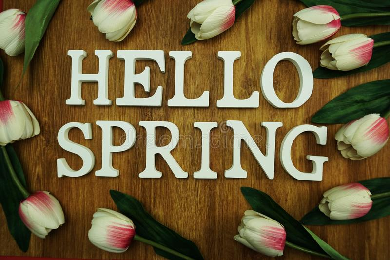 Hello spring alphabet letter with tulip flower on wooden background royalty free stock images