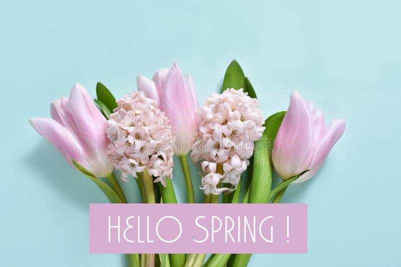 Hello spring background stock photography