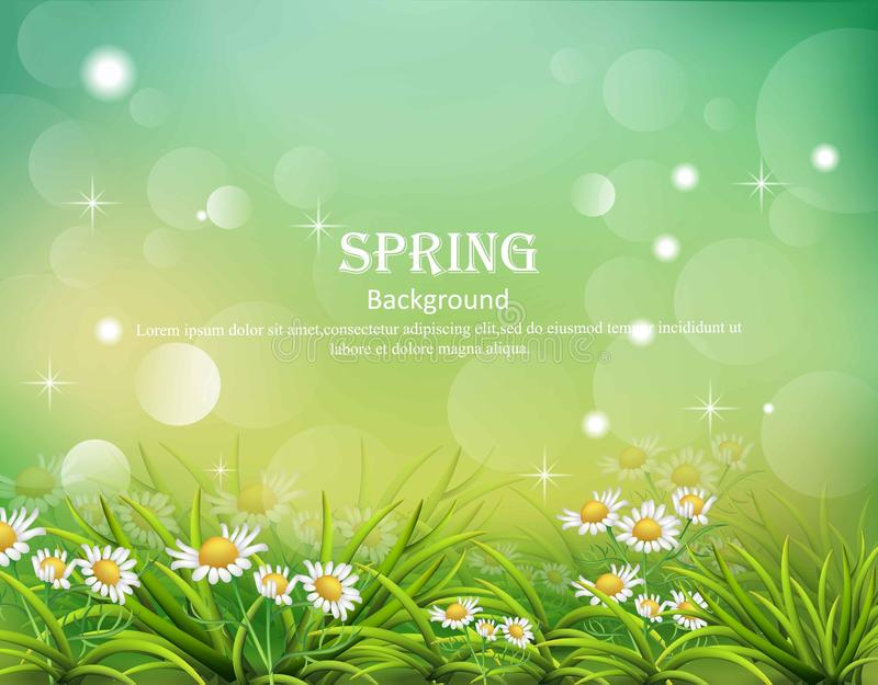 Hello spring background with chamomile flowers Vector stock illustration