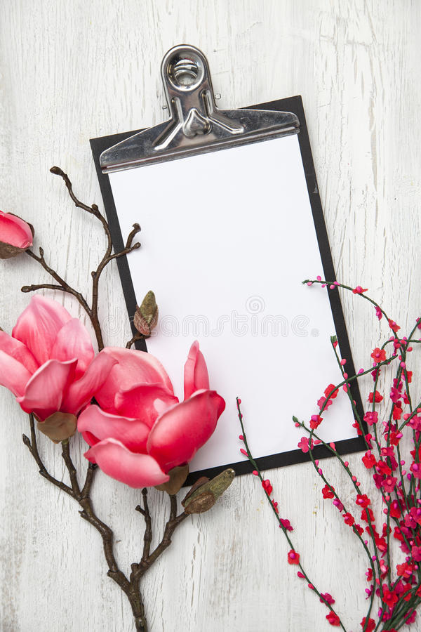 Hello spring background with flowers. Spring background with nice flowers on white wooden subsoil stock image