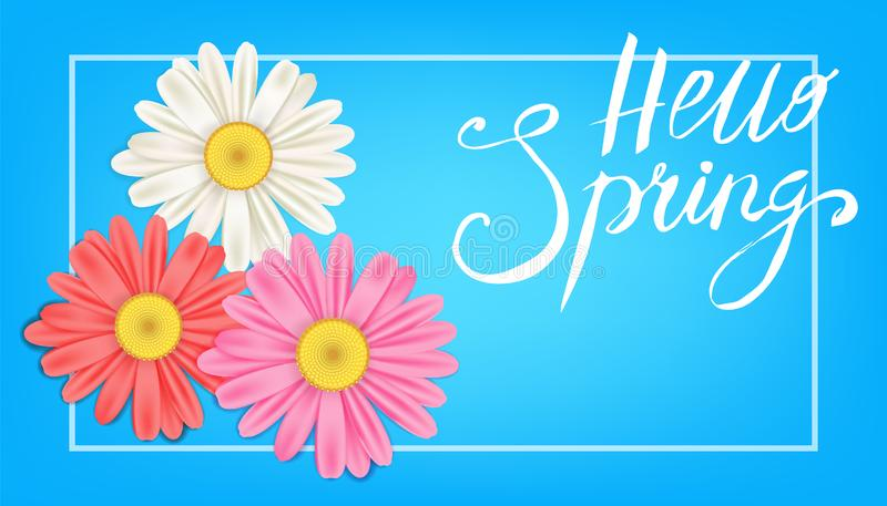Hello Spring banner. Hand drawn lettering. Background with chamomile, daisy. Spring Time template, flyer, posters, brochure. Happy. Hello Spring banner. Hand vector illustration