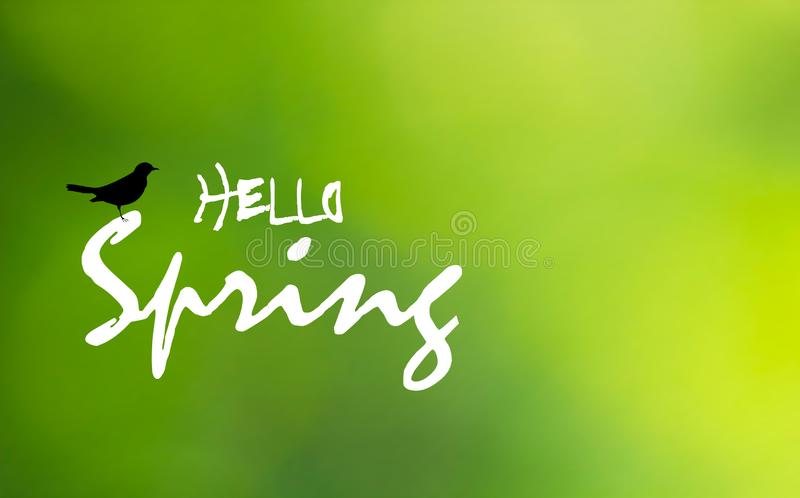 Hello Spring text and blackbird on green blurry background, vector eps 10 vector illustration