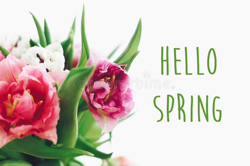 Hello spring text sign on beautiful double peony tulips bouquet in light. Springtime. Stylish floral greeting card. Hello march stock photography