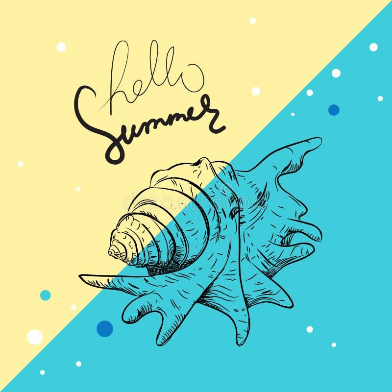 Hello summer card banner. Lambis spider conch Chicoreus aculeatus, large sea snail Unique shells, molluscs Gastropoda. Sketch. Black contour on blue beige vector illustration