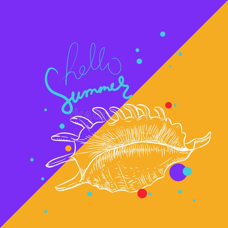 Hello summer card banner. Lambis spider conch, large sea snail, a marine gastropod mollusk in the family Strombidae, conchs. stock illustration