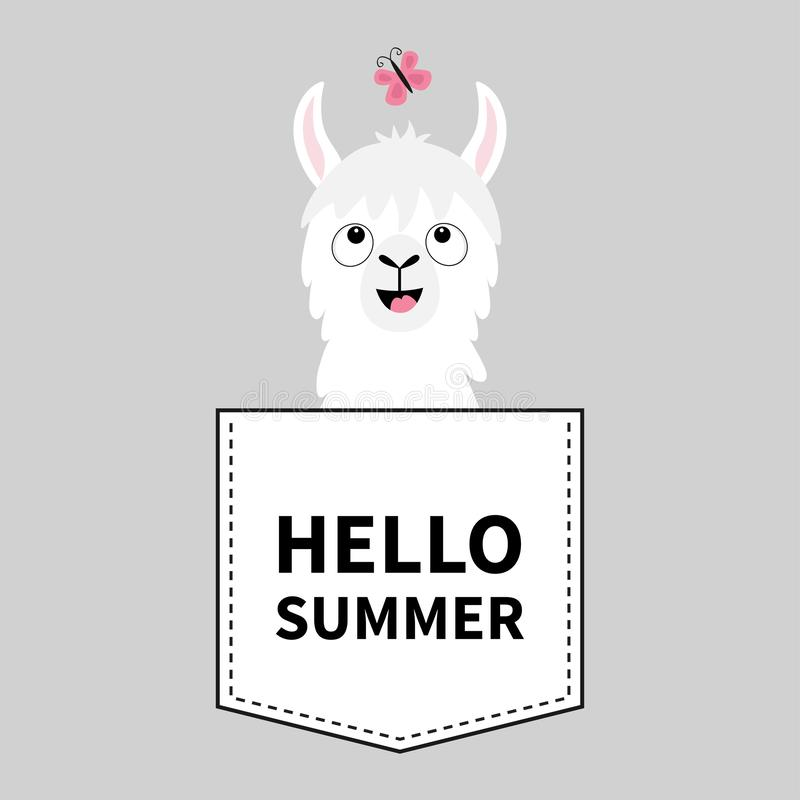 Hello summer. Llama alpaca face head in the pocket. Butterfly. Cute cartoon animals. Kawaii character. Dash line. White and black. Color. T-shirt design. Baby royalty free illustration