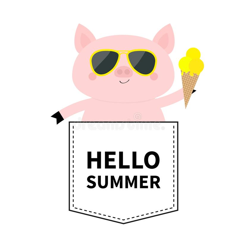 Hello summer. Pig face head in the pocket. Glasses, icecream. Cute cartoon animals. Piggy piglet character. Dash line. White and. Black color. T-shirt design vector illustration