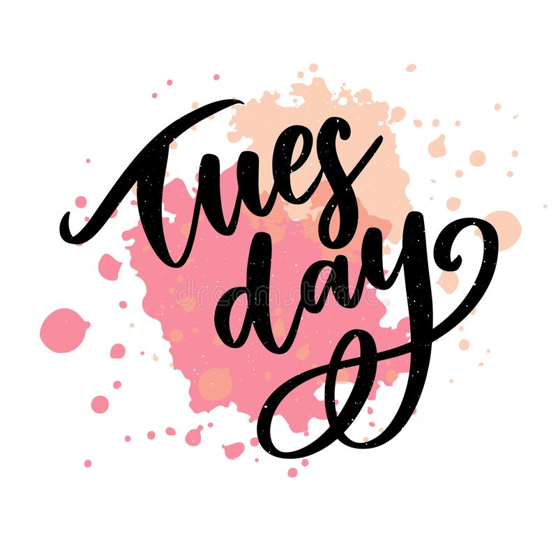 Hello Tuesday words. Quote design. Hand drawn ink lettering. Sticker for social media content. Modern brush calligraphy. Can be royalty free illustration