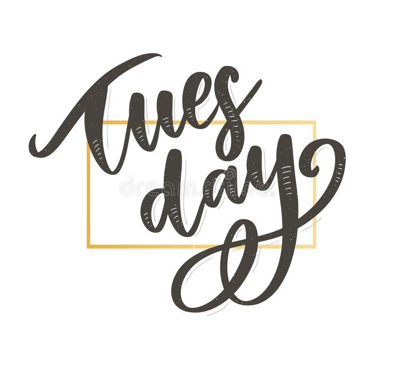 Hello Tuesday words. Quote design. Hand drawn ink lettering. Sticker for social media content. Modern brush calligraphy royalty free illustration
