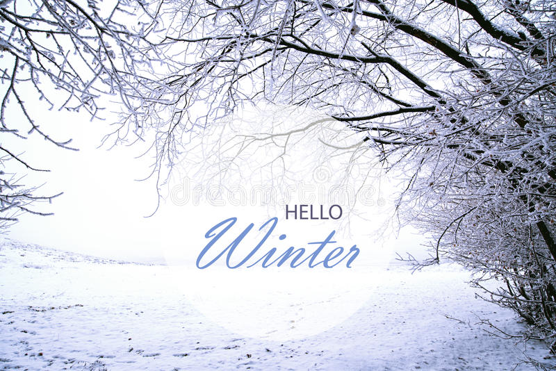 Download Hello Winter Wallpaper Stock Image. Image Of Blue, Snowy   83639853 Good Looking