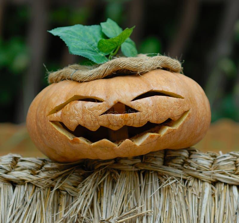 helloween dyni się uśmiecha obrazy royalty free