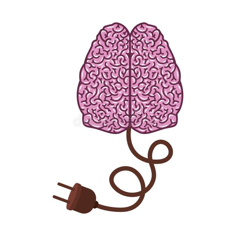 Hellpurpurne Farbe Des Gehirnschattenbildes Mit Zwei Zerebralen ...