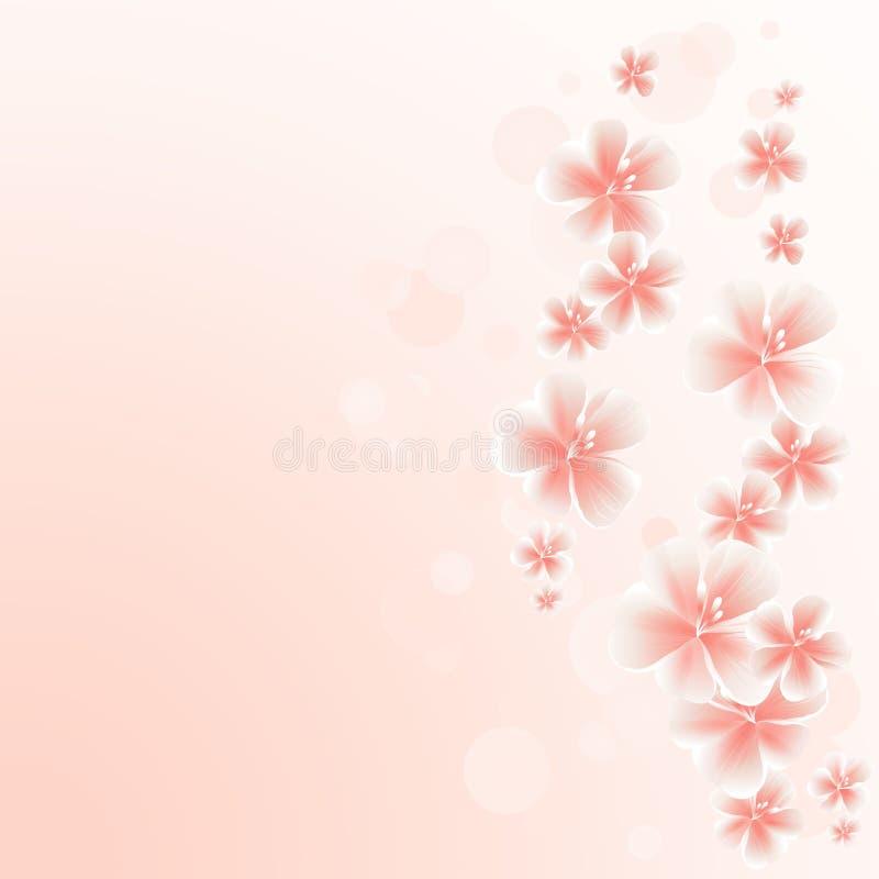 Hellrosa Pfirsich blüht Grenze auf rosa bokeh Hintergrund Apple-Baum Blumen Cherry Blossom Vektor ENV 10, cmyk stock abbildung