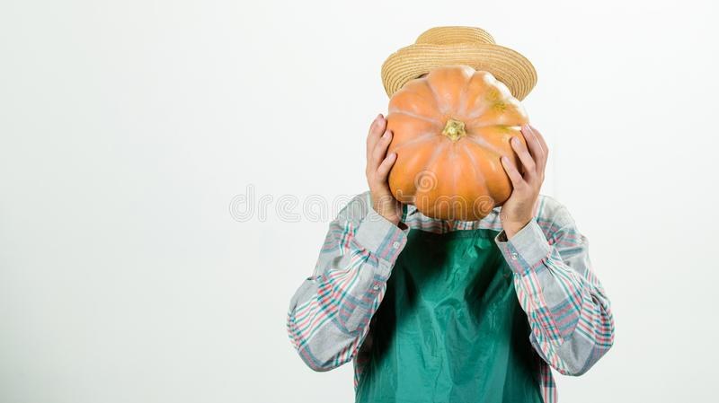 Helpful for healthy. rich autumn crop. seasonal vitamin. natural food. happy halloween. healthy product. man with. Pumpkin. man farmer hold big squash. harvest stock image