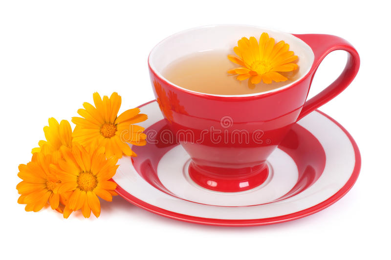 Helpful tea with marigold flowers isolated stock image