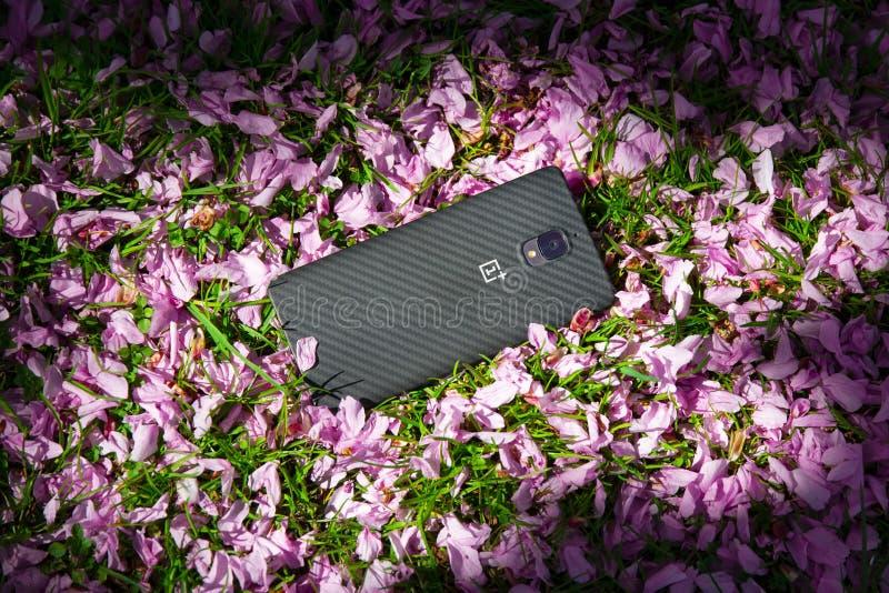 Helsinborg,瑞典- 2018年5月13日:OnePlus 3T手机在草的庭院里与在阳光下的花瓣 库存图片