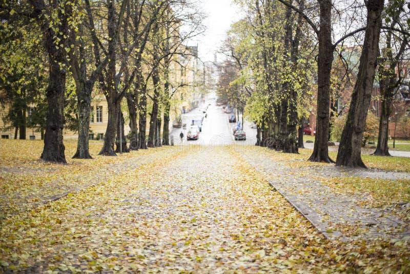Helsinki, Finlandia obraz royalty free