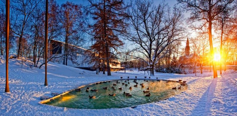 Helsinki-Park mit Teich lizenzfreie stockfotos