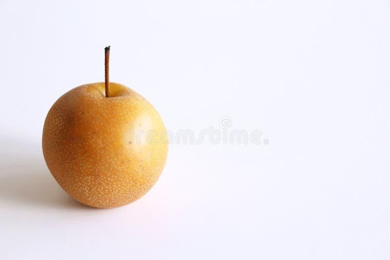 Helt kinesiskt päron eller Nashi päron med stammen på vit bakgrund, matbegrepp arkivfoto