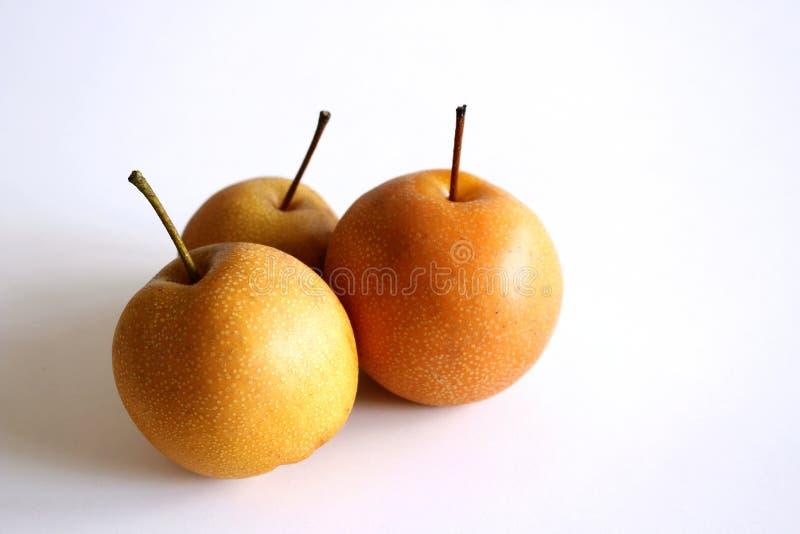 Helt kinesiskt päron eller Nashi päron med stammen på vit bakgrund olivgrön för olja för kök för kockbegreppsmat ny över hällande royaltyfria bilder