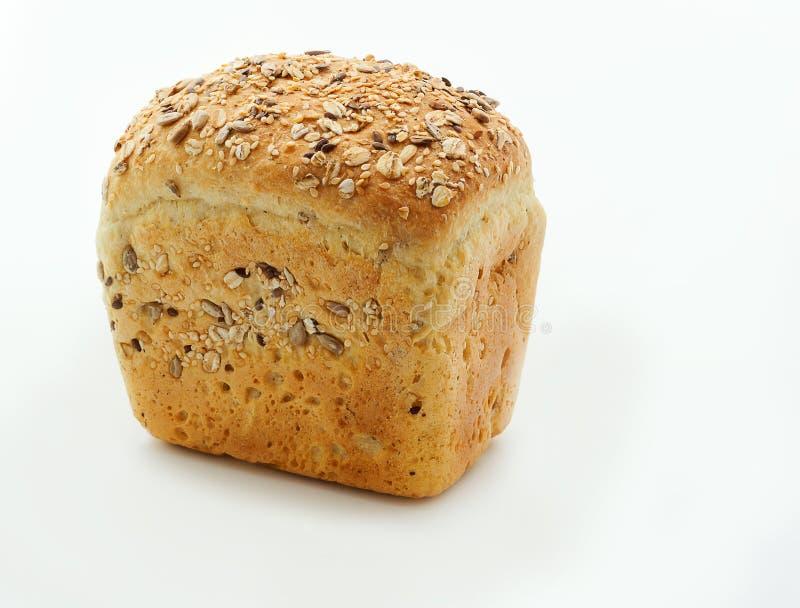 Helt kornbröd som isoleras på vit bakgrund Bröd för havremjöl royaltyfri bild