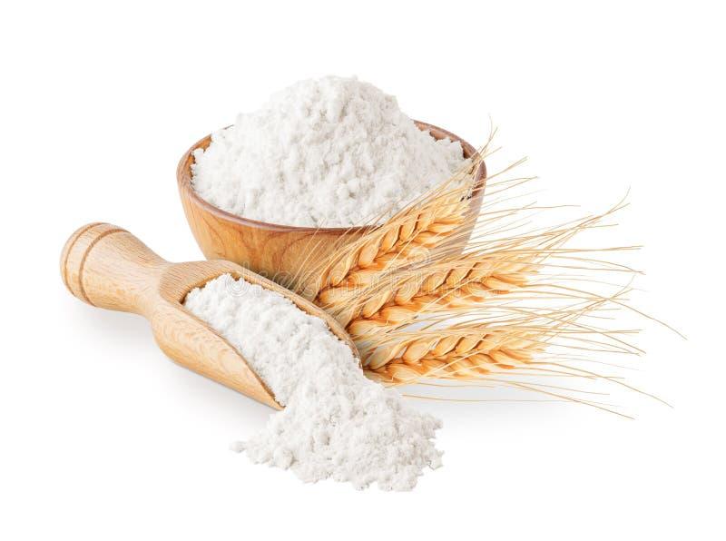 Helt kornvetemjöl och öron som isoleras på vit arkivbild