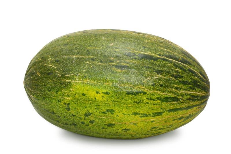 helt melonsocker royaltyfri bild