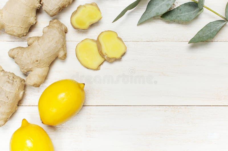 Helt och skivade den nya ingefäran rotar, eukalyptuns, citron på vitt träutrymme för kopian för den bästa sikten för bakgrund Sma royaltyfria bilder