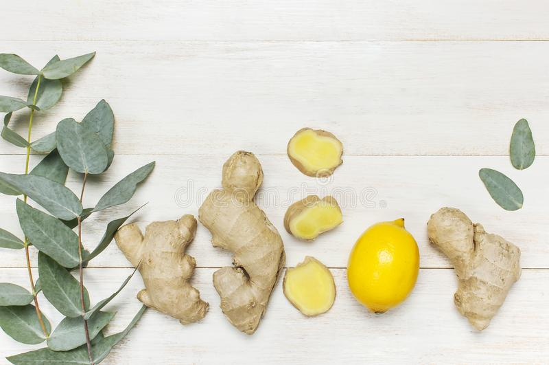 Helt och skivade den nya ingefäran rotar, eukalyptuns, citron på vitt träutrymme för kopian för den bästa sikten för bakgrund Sma royaltyfri bild